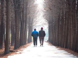 walking-down-a-wooded-path